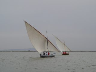 Two traditional lating-rigged racing boats in La Albufera
