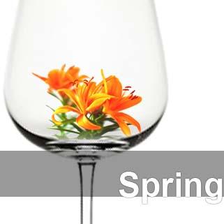 Wine glass with spring blossom inside