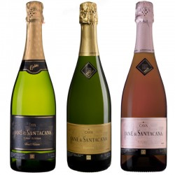 Spanish Cava Mixed Case of 6