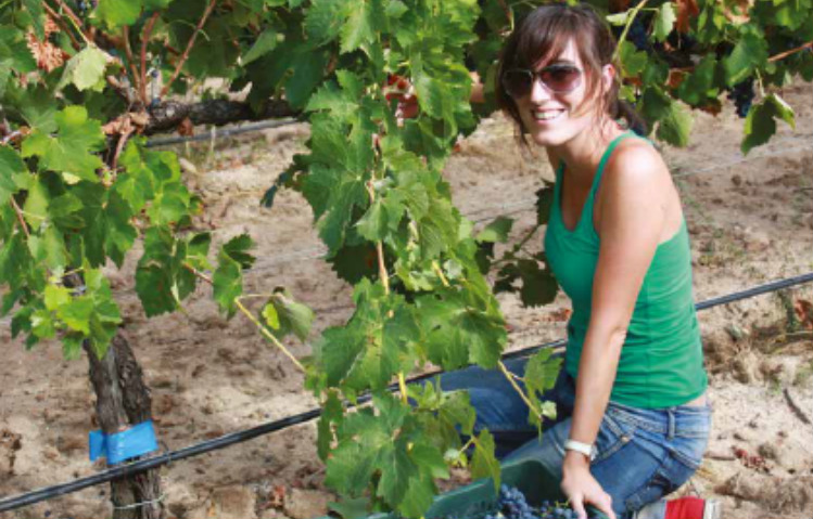 Female winemaker Maite Sanchez at work at the vineyard