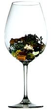 Bodega Soul - Aroma Crianza (image courtesy of alfabeto de aromas)