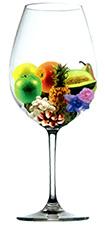 Bodega Soul - Aroma Parellada (image courtesy of alfabeto de aromas)