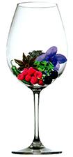 Bodega Soul - Aroma Merlot (image courtesy of alfabeto de aromas)