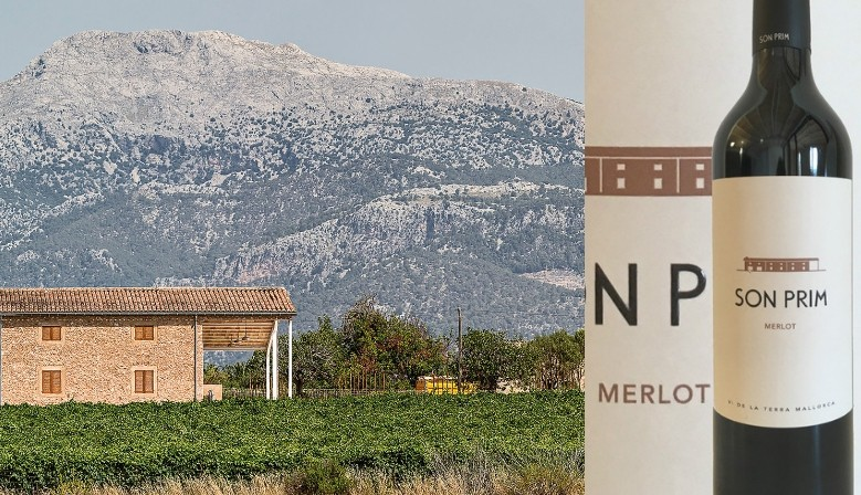 Son Prim Merlot from Mallorca